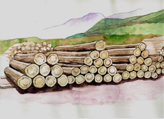 地域材、国産材の活用